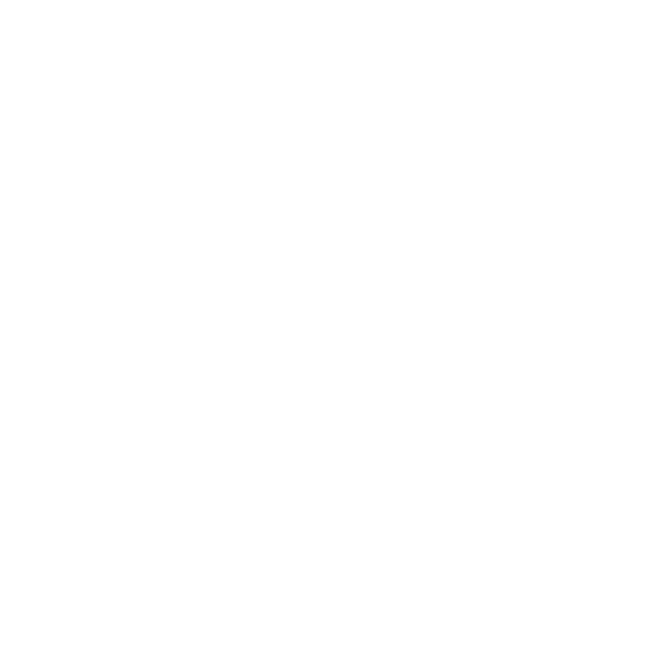 GSV Logo Wit icon